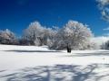 02 - Longue sieste : pied dans la neige, tête au soleil