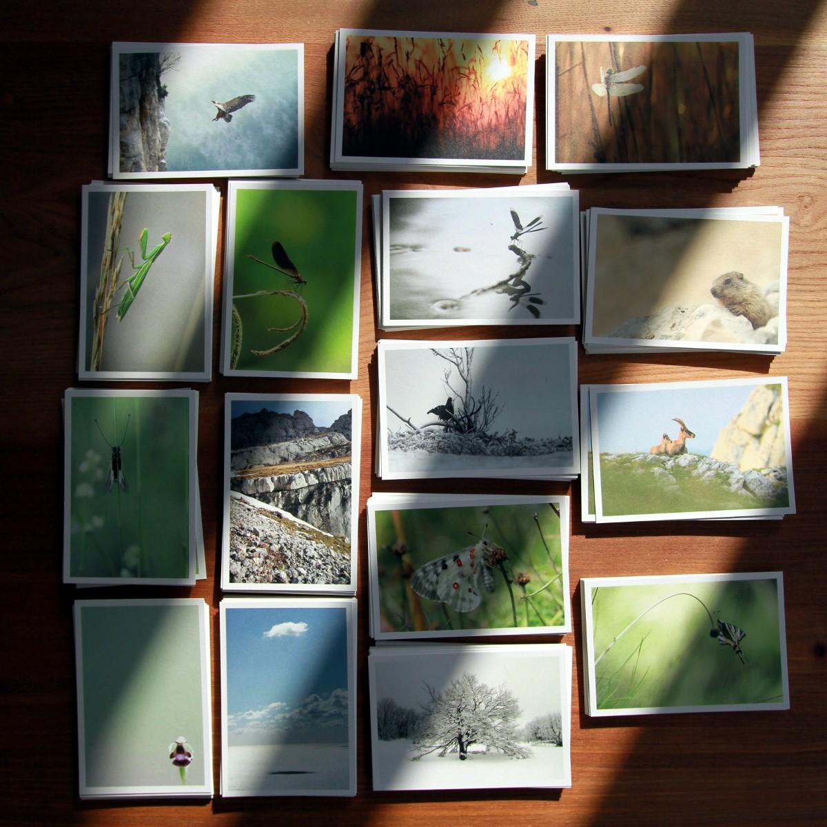 cartes postales #2