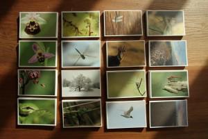 carte serie 1