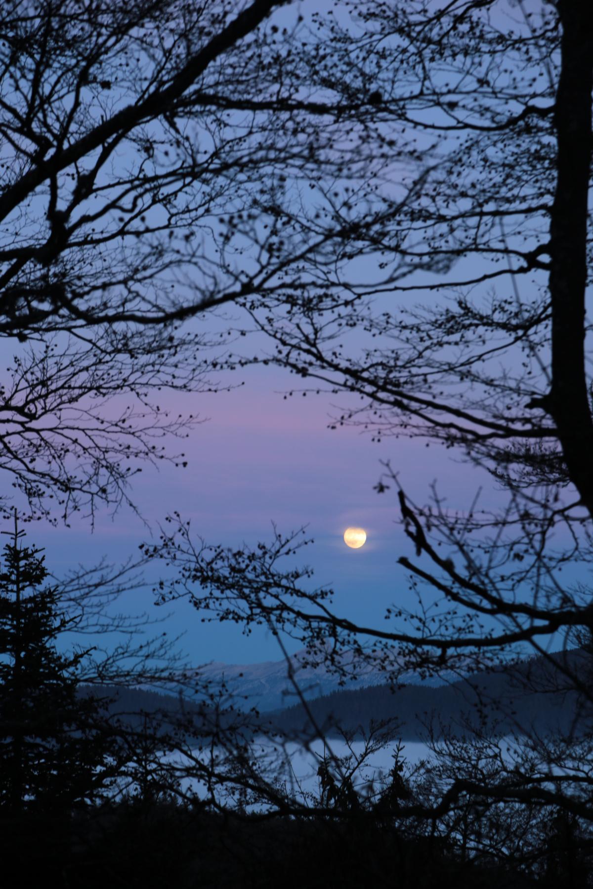 Lever de pleine lune façon estampe